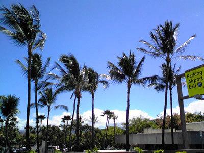 hawaii1108.jpg