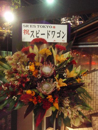 tokyoflower.jpg